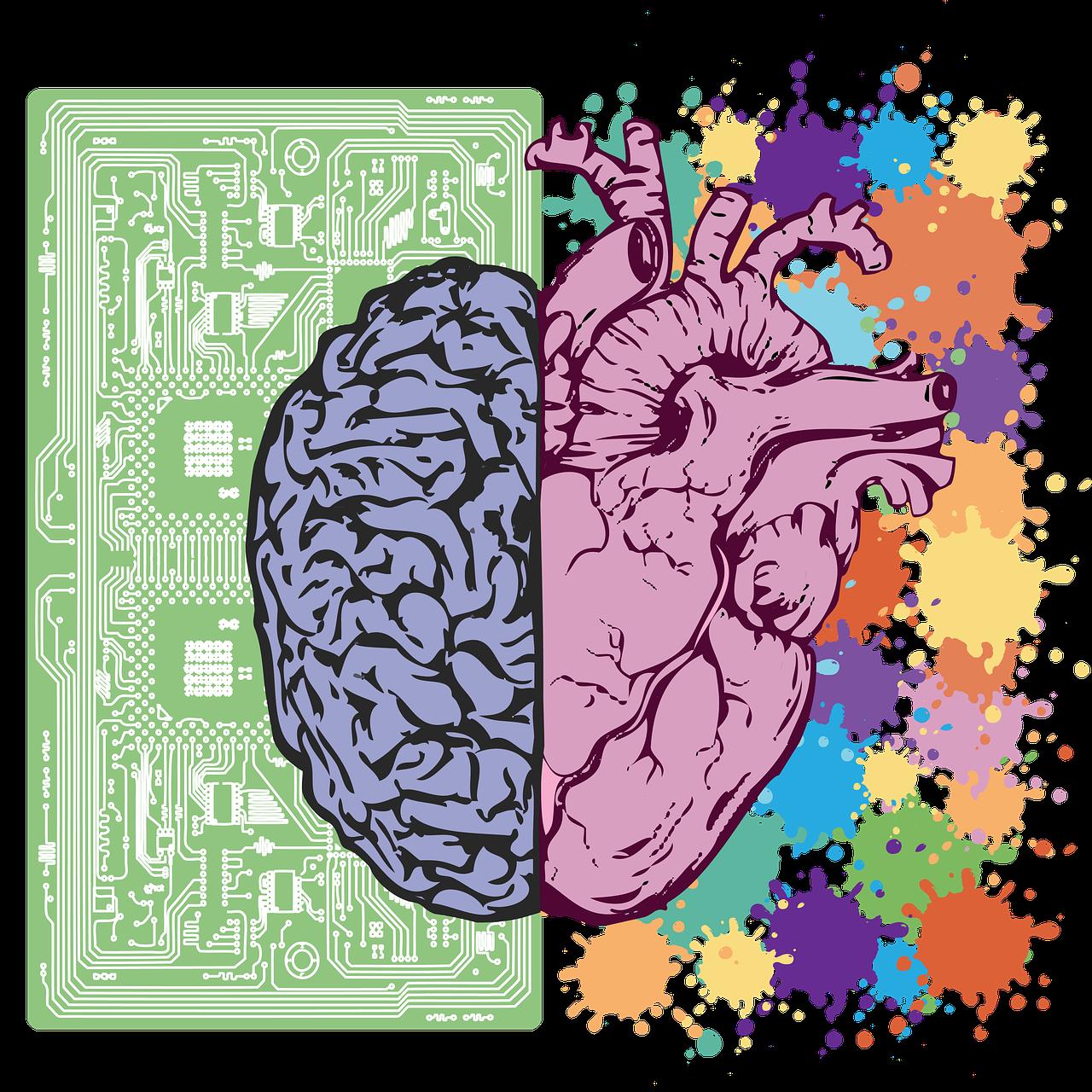 brain, heart, balance